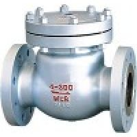 swing check valve(swing check valve,stainless steel check valve,check valve)